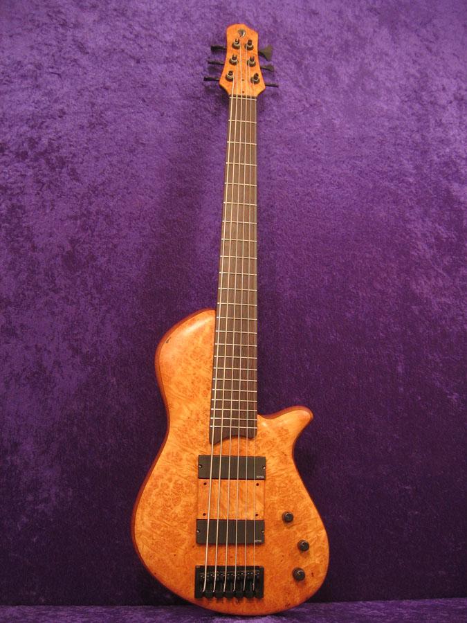 Custom Drake 6 String Bass