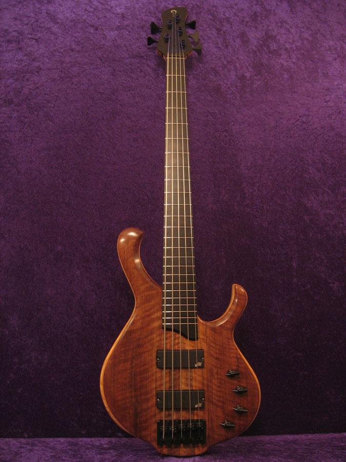 Koog Model 5 string bass